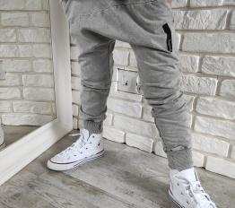 Spodnie Despacito Wilk dekatyzowane szare
